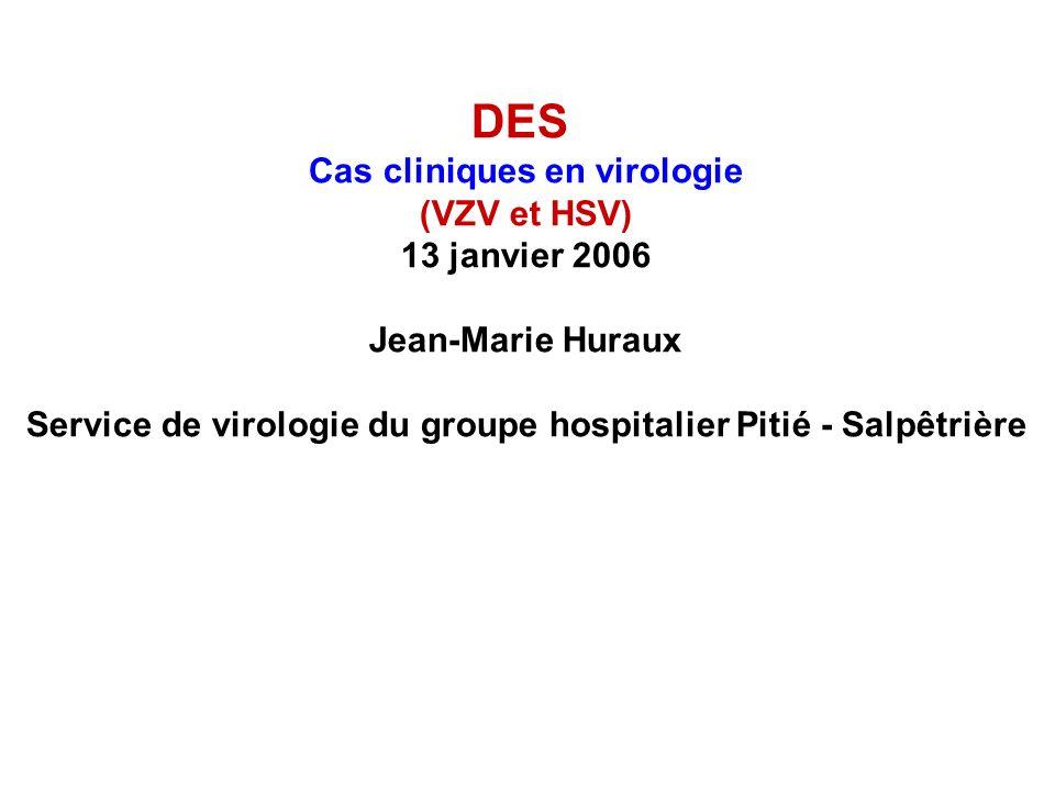 DES Cas cliniques en virologie (VZV et HSV) 13 janvier 2006