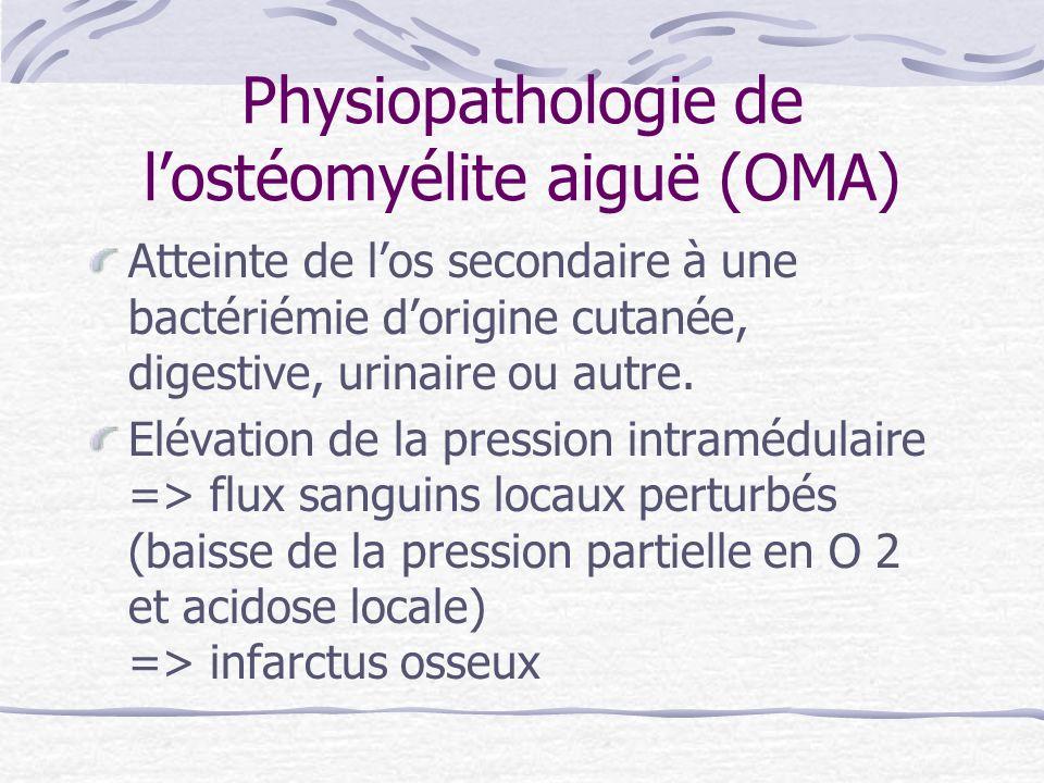 Physiopathologie de l'ostéomyélite aiguë (OMA)