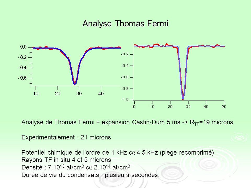 Analyse Thomas Fermi Analyse de Thomas Fermi + expansion Castin-Dum 5 ms -> RTF=19 microns. Expérimentalement : 21 microns.