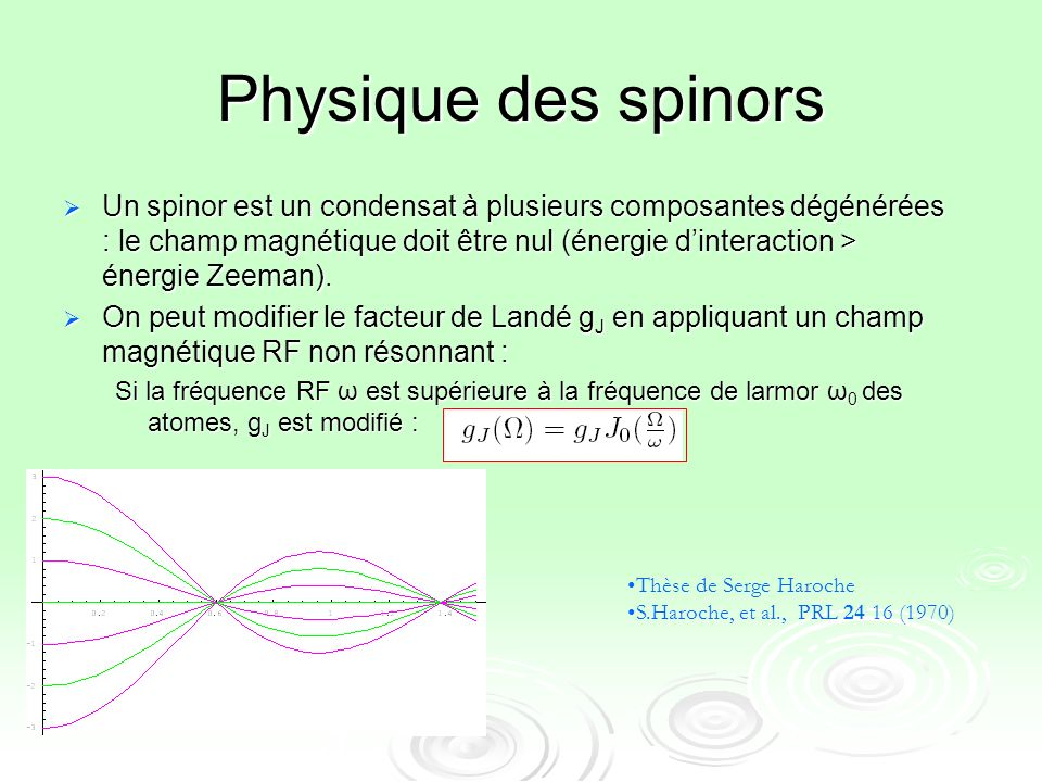 Physique des spinors