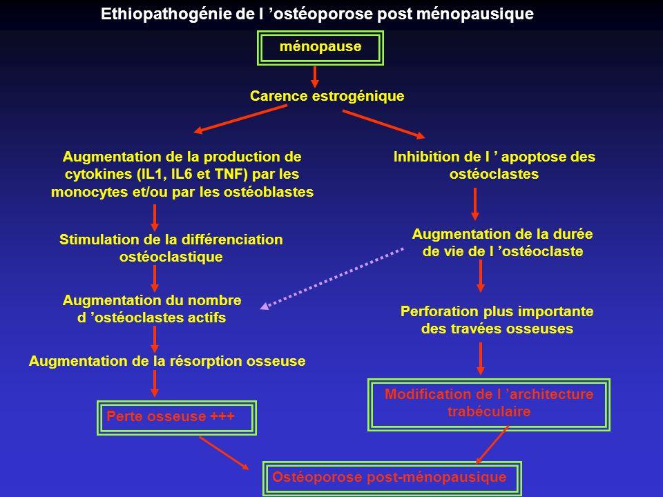 Ethiopathogénie de l 'ostéoporose post ménopausique