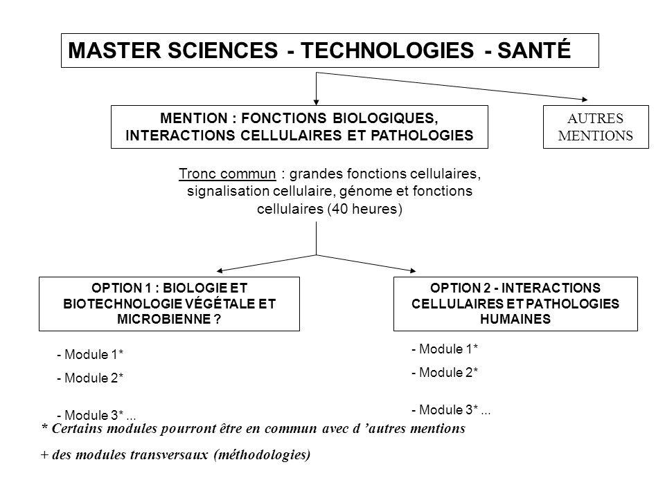 MASTER SCIENCES - TECHNOLOGIES - SANTÉ