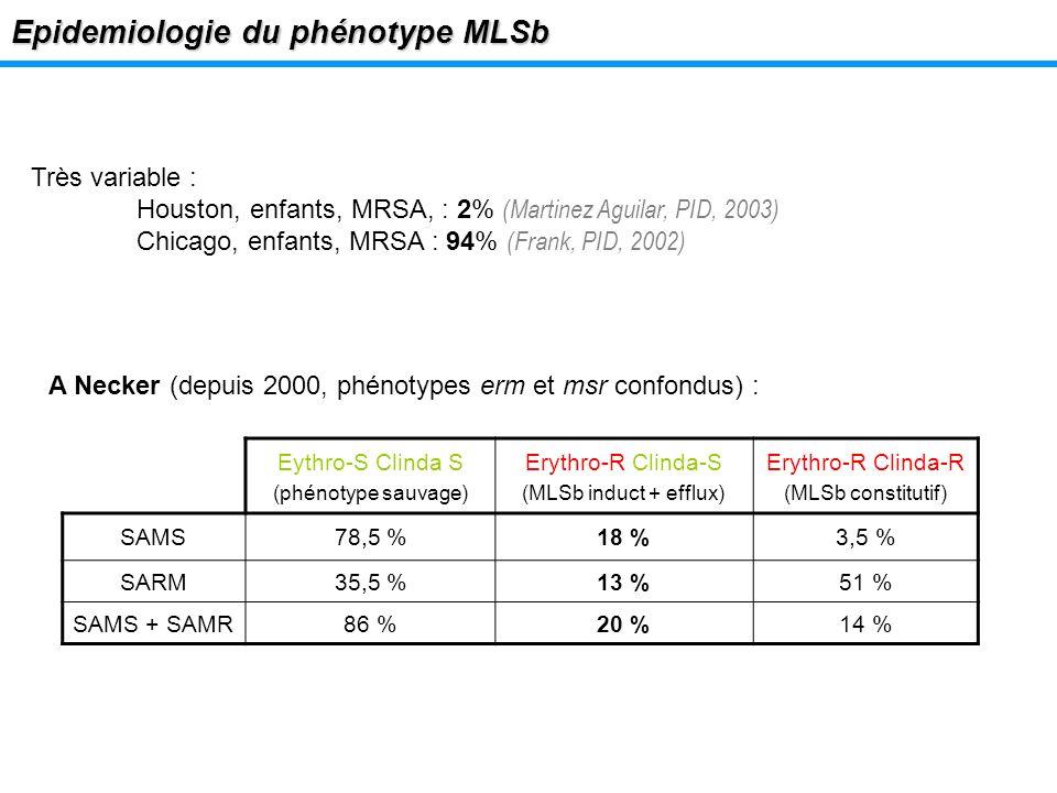 Epidemiologie du phénotype MLSb