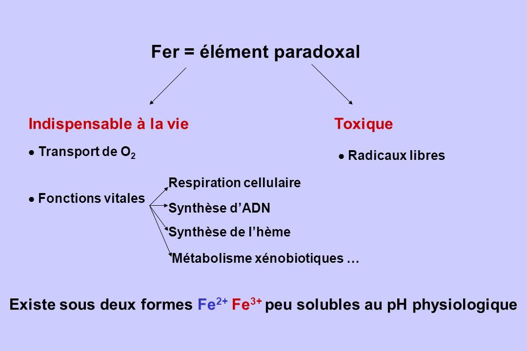 Fer = élément paradoxal