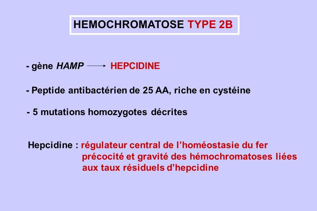 HEMOCHROMATOSE TYPE 2B - gène HAMP HEPCIDINE