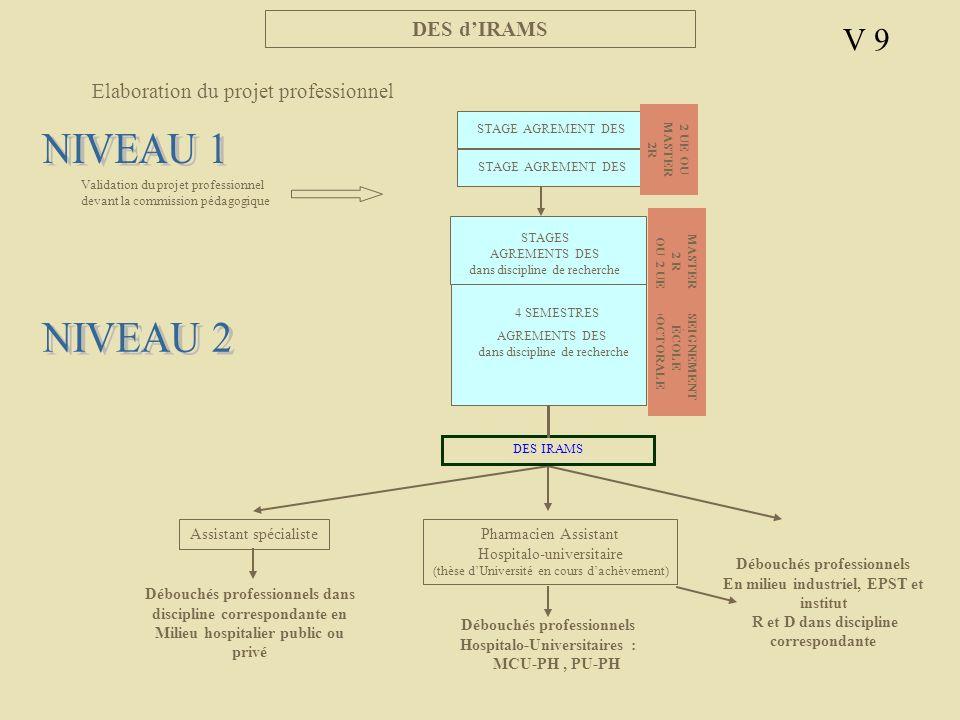 NIVEAU 1 NIVEAU 2 V 9 DES d'IRAMS Elaboration du projet professionnel