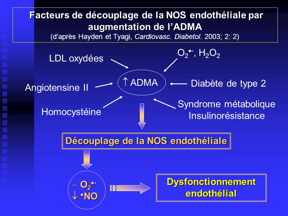 Dysfonctionnement endothélial