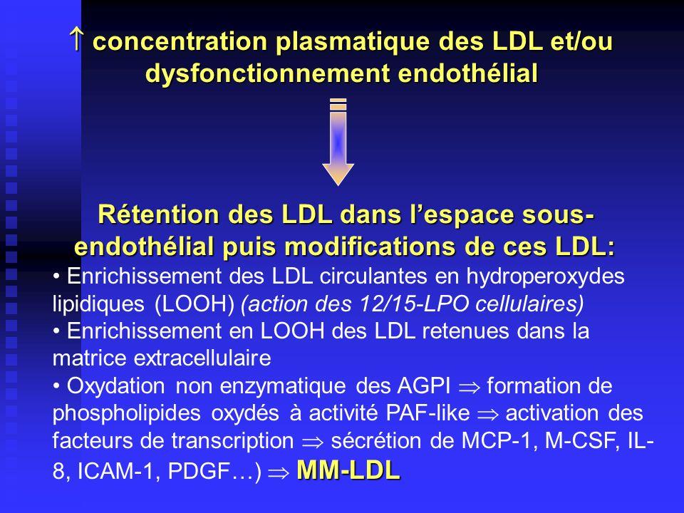  concentration plasmatique des LDL et/ou dysfonctionnement endothélial