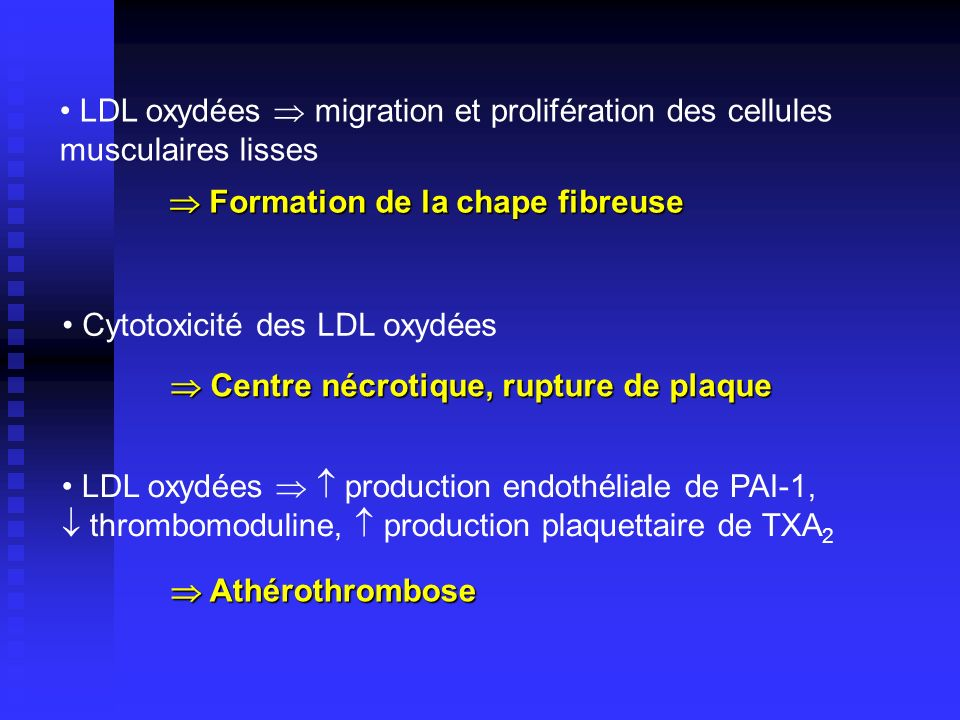 LDL oxydées  migration et prolifération des cellules musculaires lisses