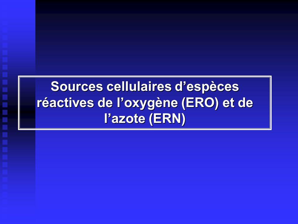 Sources cellulaires d'espèces réactives de l'oxygène (ERO) et de l'azote (ERN)