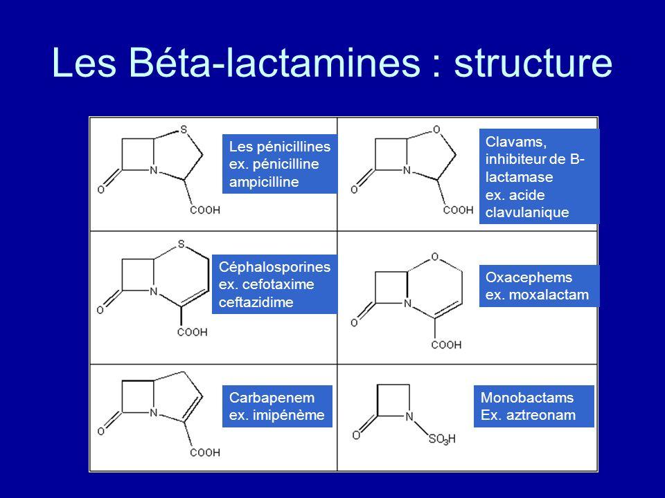 Les Béta-lactamines : structure