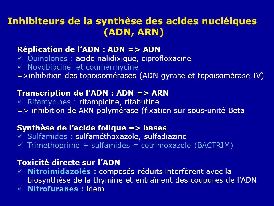 Inhibiteurs de la synthèse des acides nucléiques