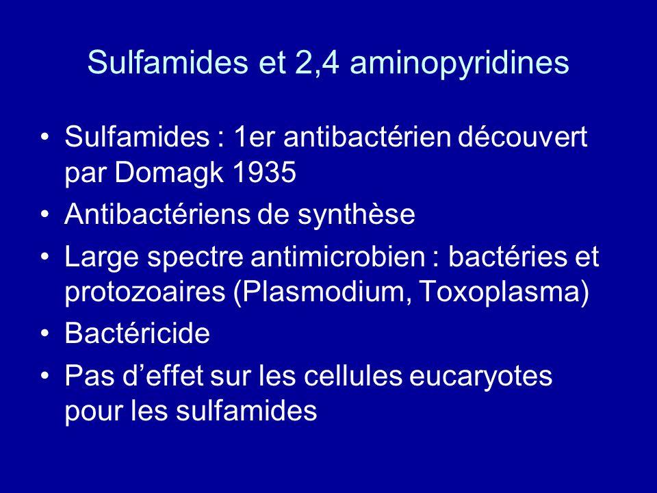 Sulfamides et 2,4 aminopyridines