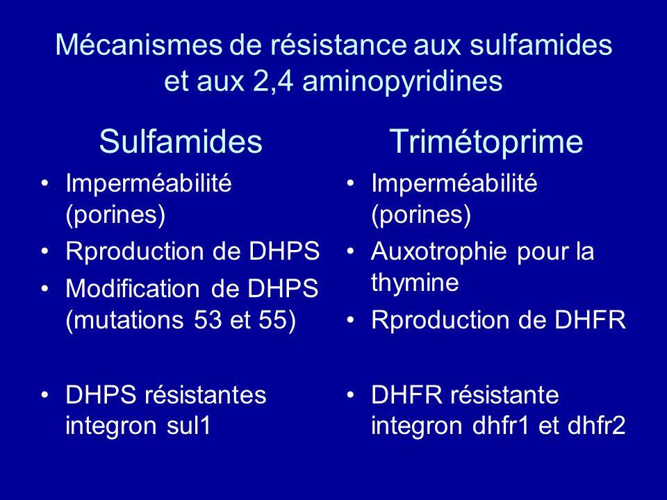 Mécanismes de résistance aux sulfamides et aux 2,4 aminopyridines
