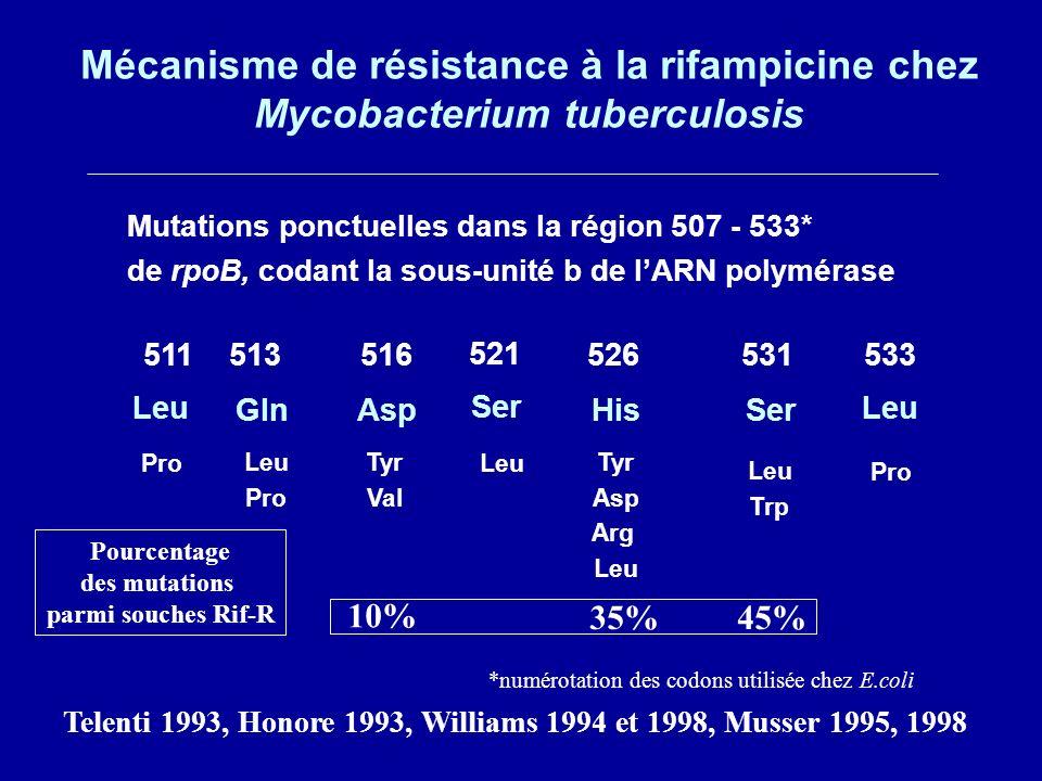 *numérotation des codons utilisée chez E.coli