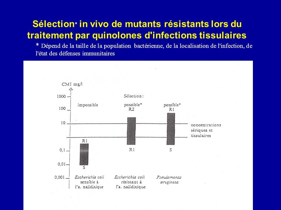 Sélection* in vivo de mutants résistants lors du traitement par quinolones d infections tissulaires