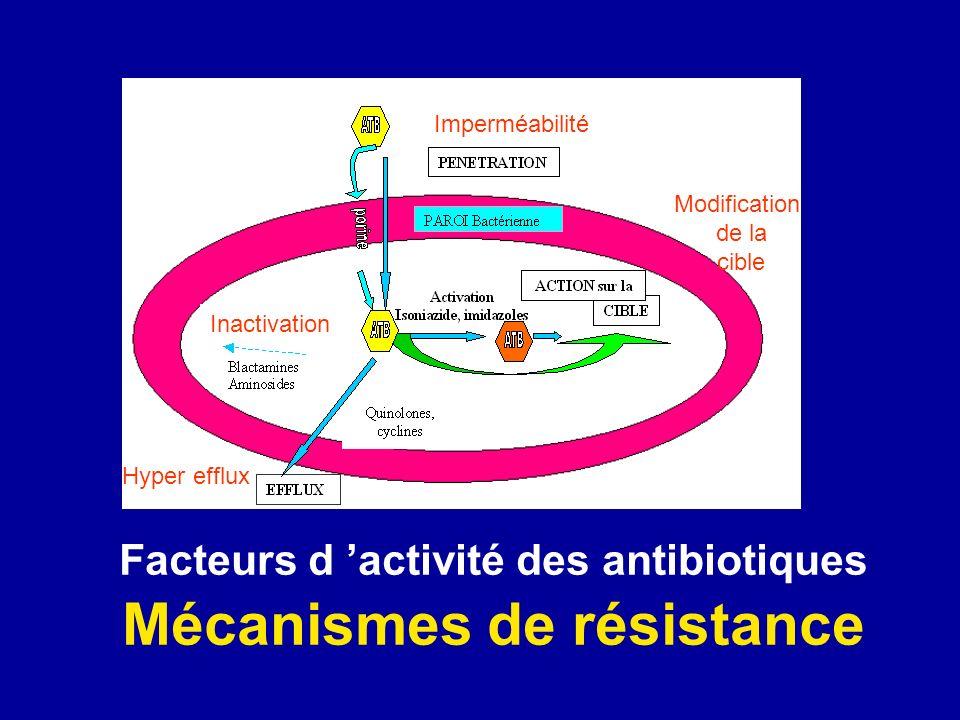 Facteurs d 'activité des antibiotiques Mécanismes de résistance
