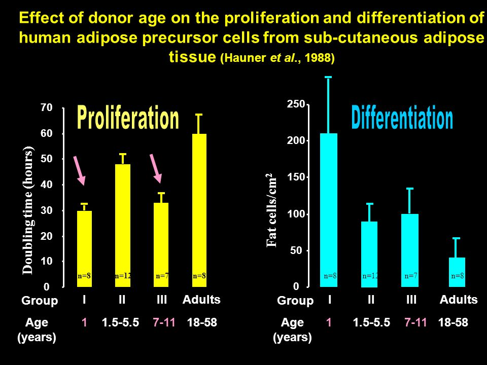 Differentiation Proliferation