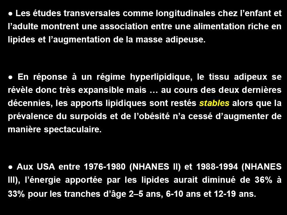● Les études transversales comme longitudinales chez l'enfant et l'adulte montrent une association entre une alimentation riche en lipides et l'augmentation de la masse adipeuse.