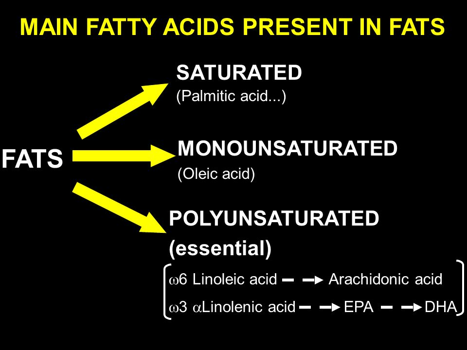 MAIN FATTY ACIDS PRESENT IN FATS