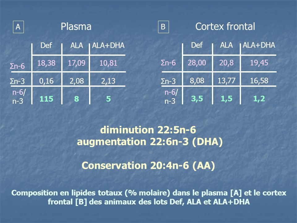 augmentation 22:6n-3 (DHA)