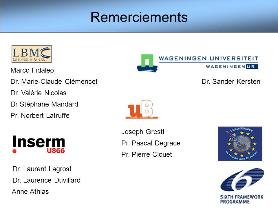 Remerciements Marco Fidaleo Dr. Marie-Claude Clémencet