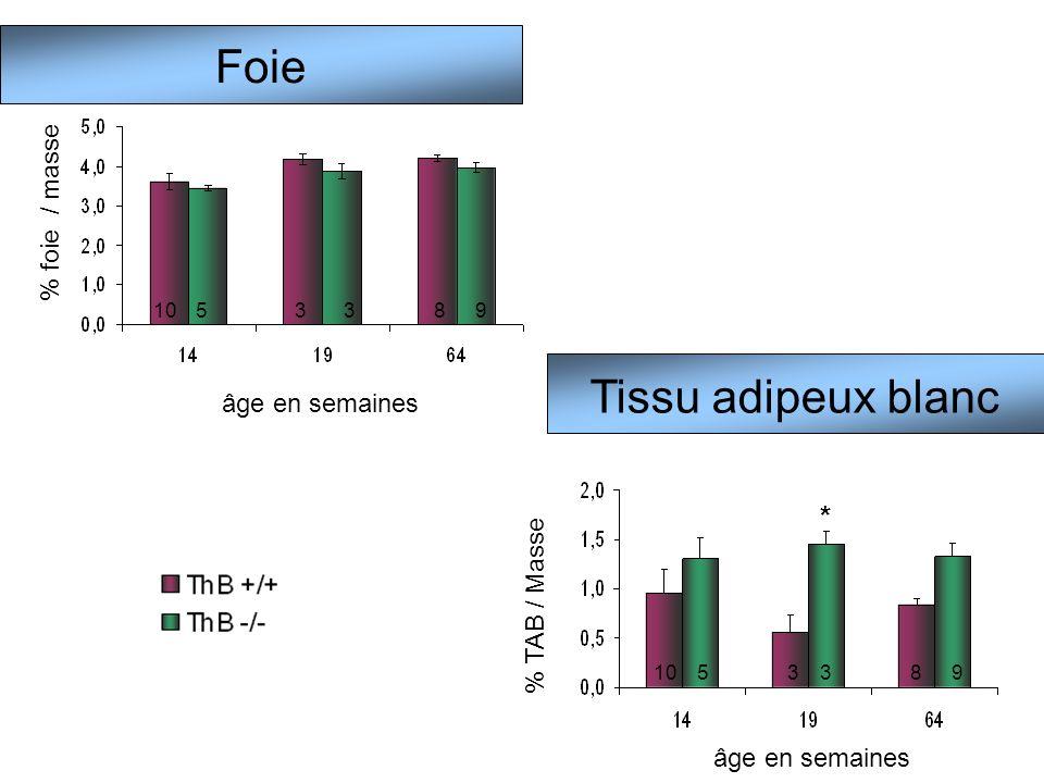 Foie Tissu adipeux blanc * % foie / masse âge en semaines