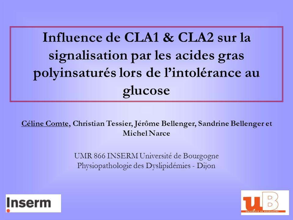 Influence de CLA1 & CLA2 sur la signalisation par les acides gras polyinsaturés lors de l'intolérance au glucose