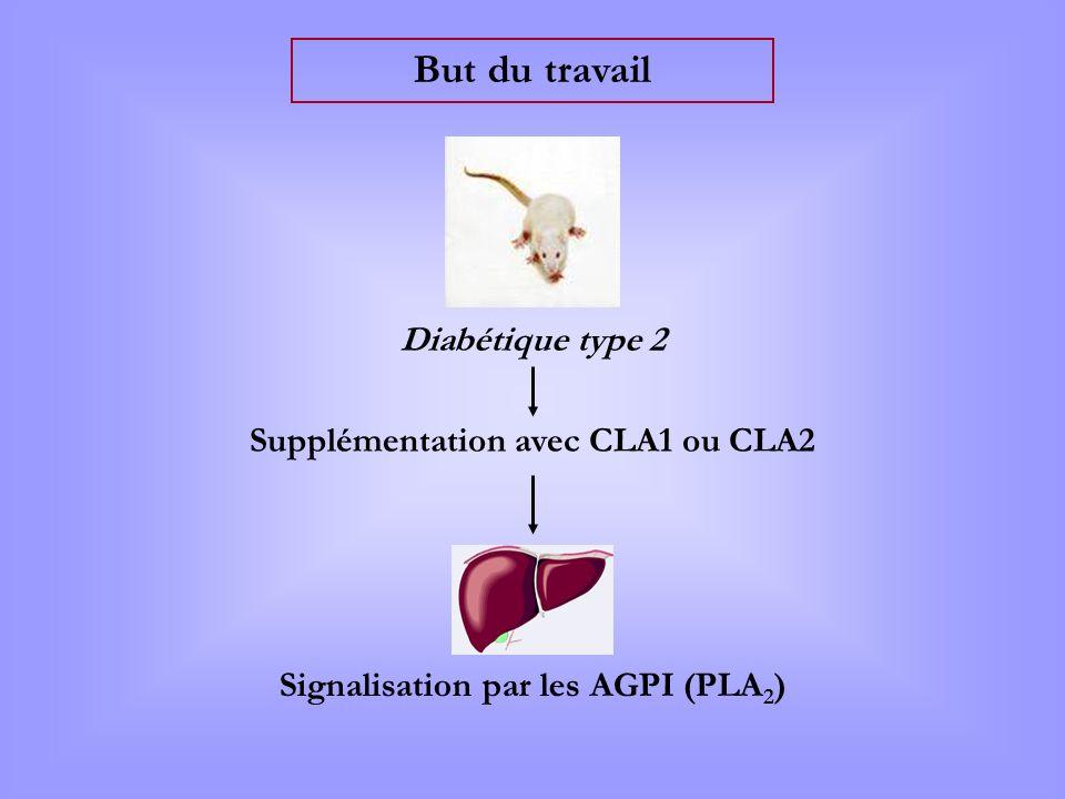 Supplémentation avec CLA1 ou CLA2