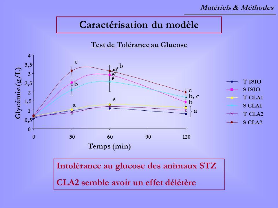 Caractérisation du modèle Test de Tolérance au Glucose