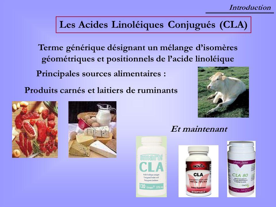 Les Acides Linoléiques Conjugués (CLA)