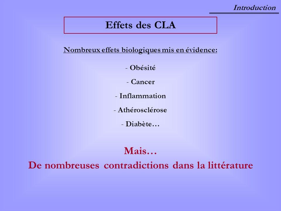 Effets des CLA Mais… De nombreuses contradictions dans la littérature