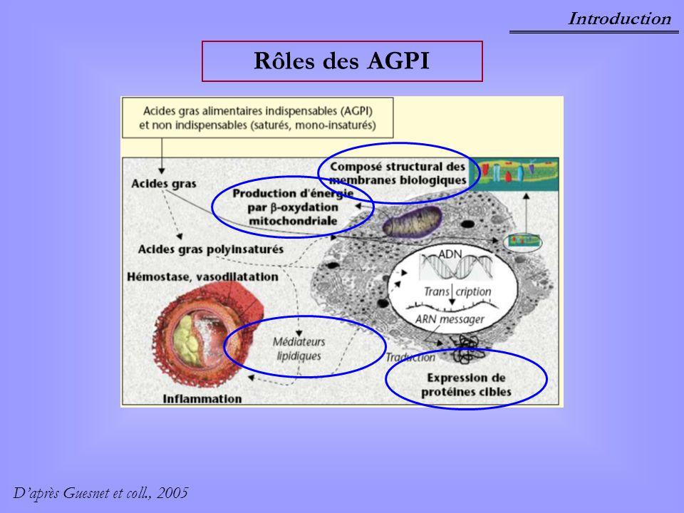 Introduction Rôles des AGPI D'après Guesnet et coll., 2005