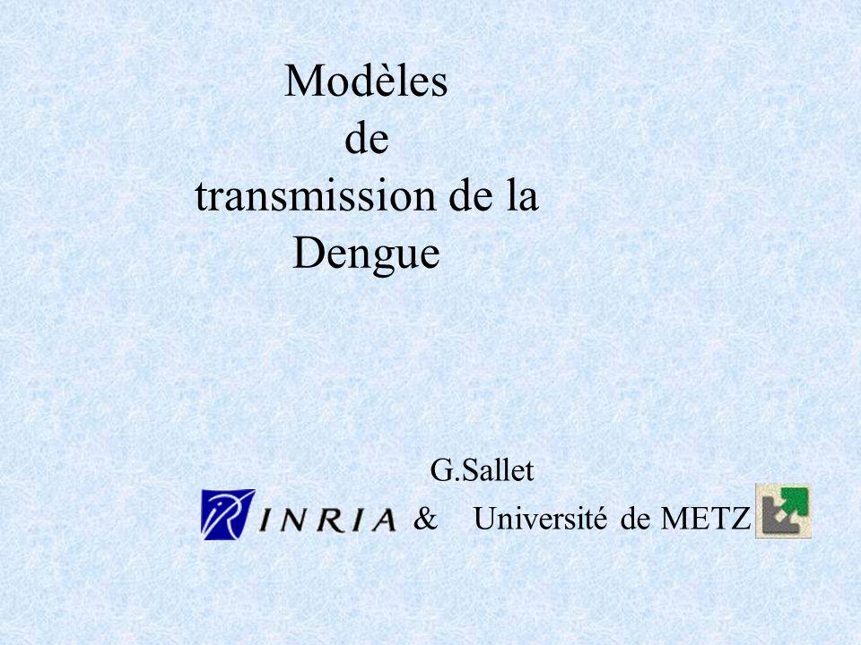 Modèles de transmission de la Dengue