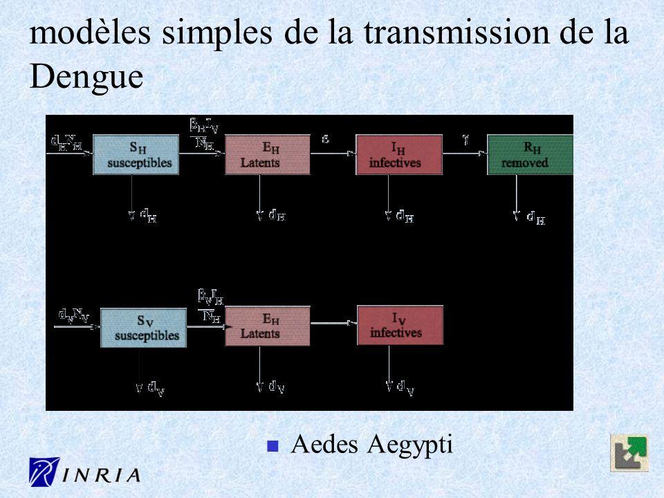modèles simples de la transmission de la Dengue