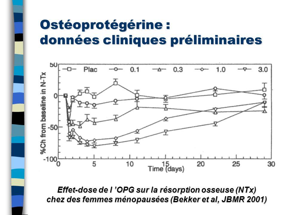 Ostéoprotégérine : données cliniques préliminaires