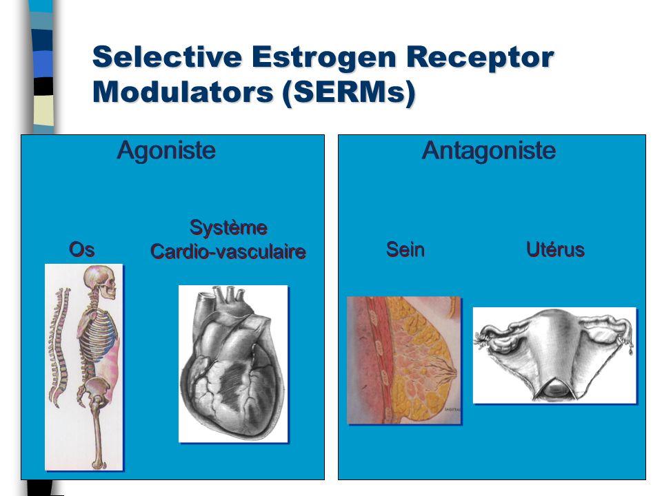 Selective Estrogen Receptor Modulators (SERMs)