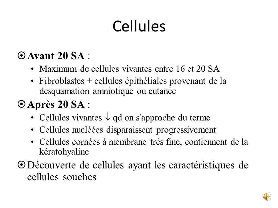 Cellules Avant 20 SA : Après 20 SA :