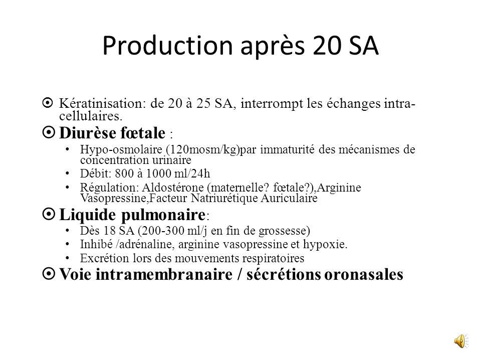 Production après 20 SA Diurèse fœtale : Liquide pulmonaire: