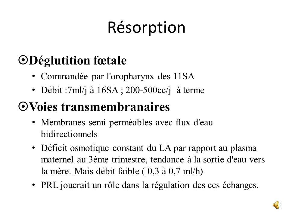 Résorption Déglutition fœtale Voies transmembranaires