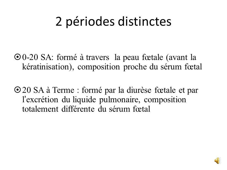 2 périodes distinctes 0-20 SA: formé à travers la peau fœtale (avant la kératinisation), composition proche du sérum fœtal.