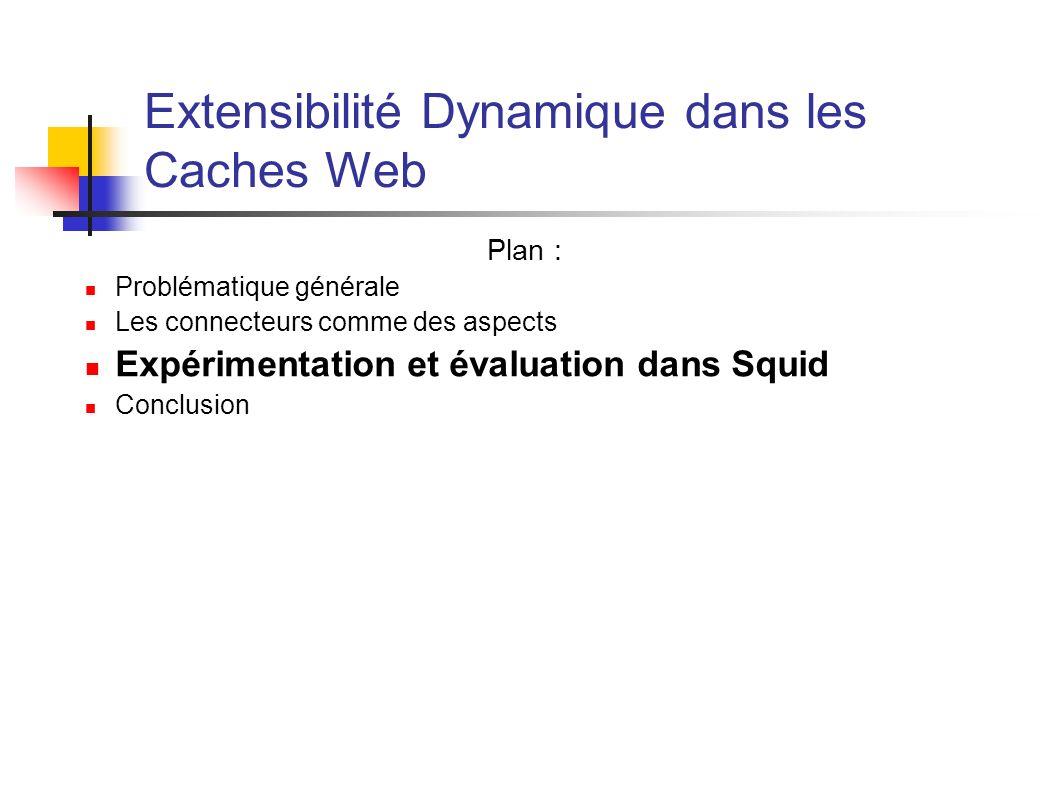Extensibilité Dynamique dans les Caches Web