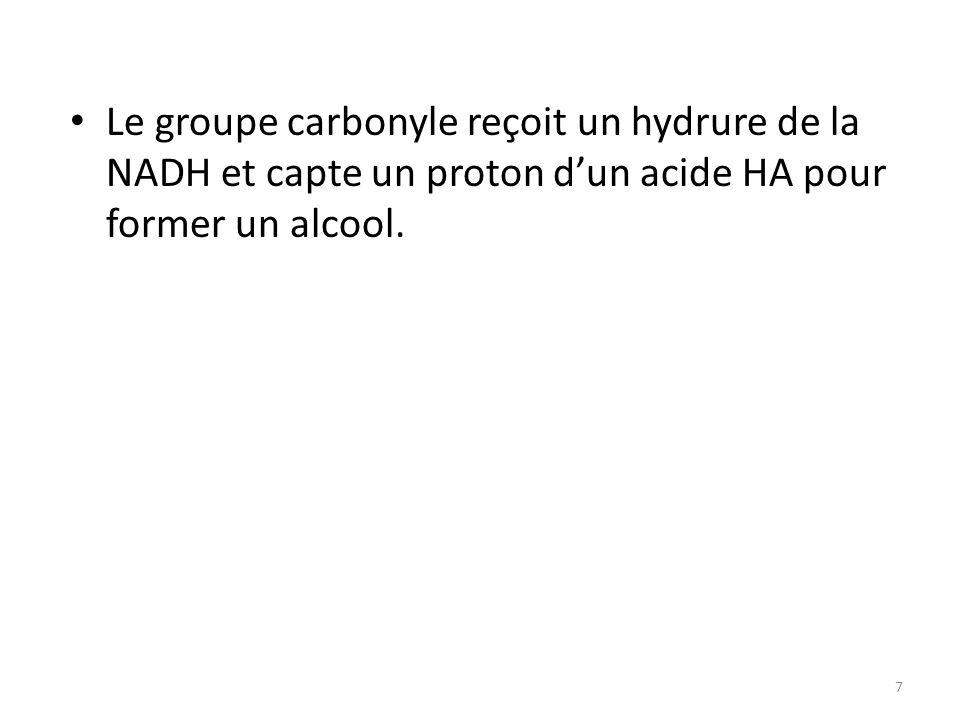 Le groupe carbonyle reçoit un hydrure de la NADH et capte un proton d'un acide HA pour former un alcool.