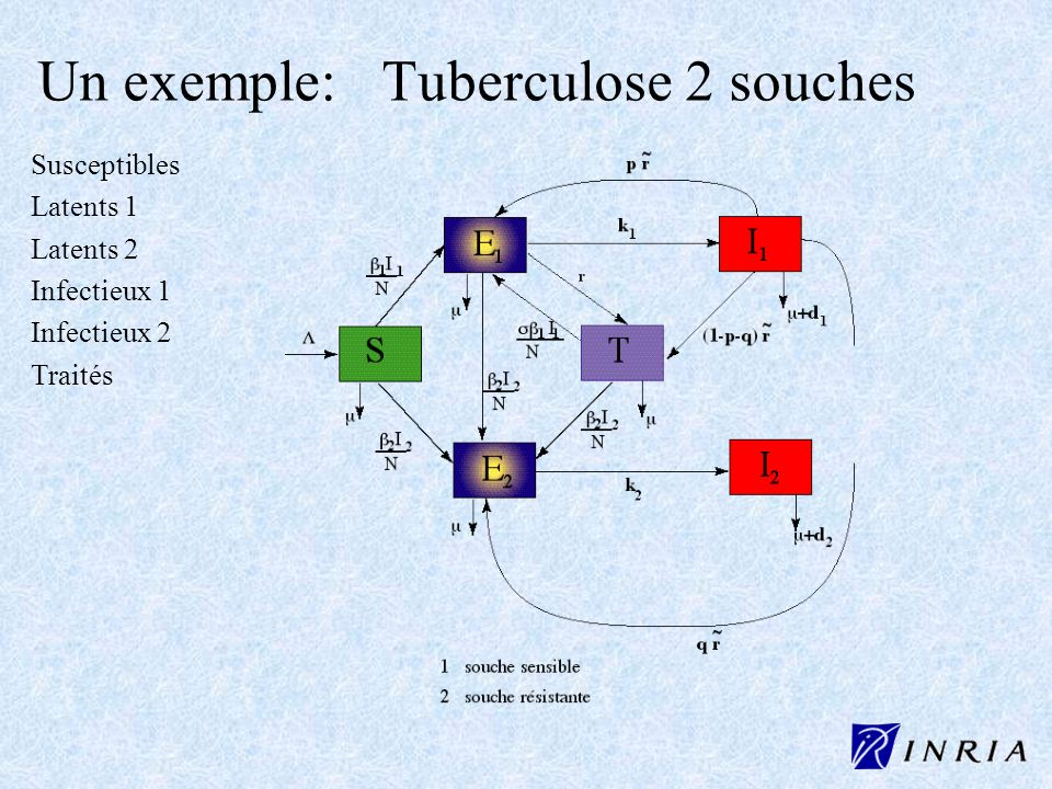 Un exemple: Tuberculose 2 souches