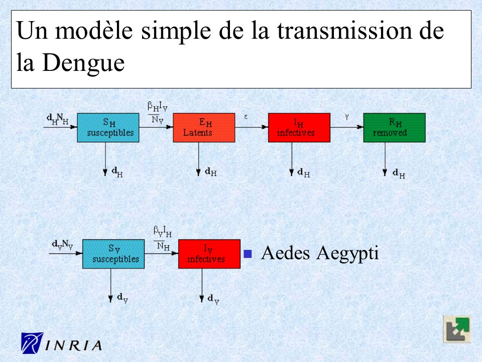 Un modèle simple de la transmission de la Dengue