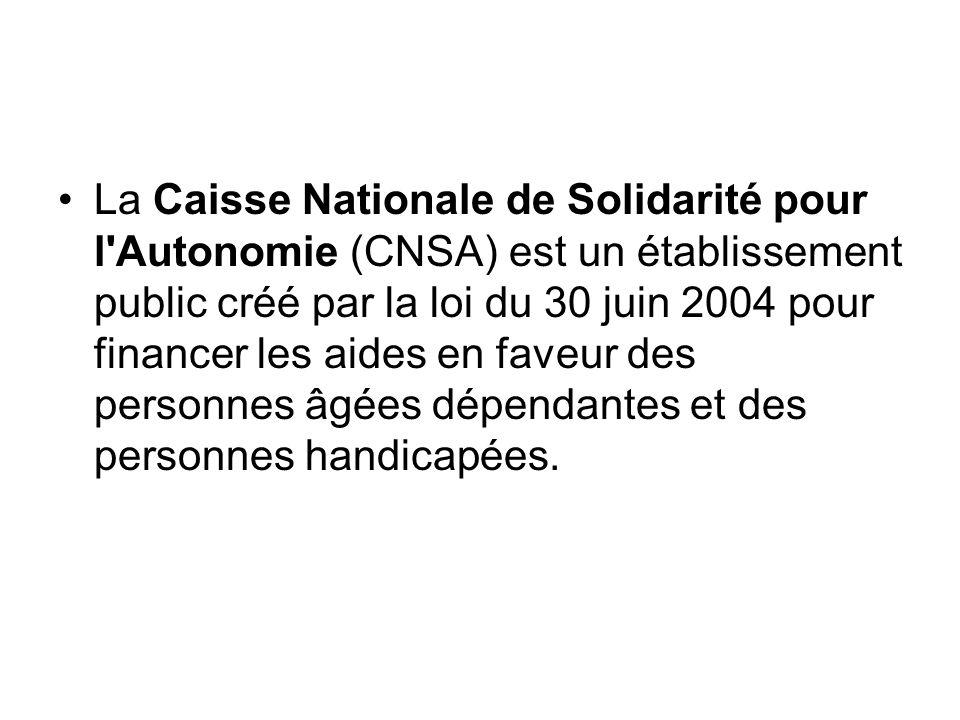 La Caisse Nationale de Solidarité pour l Autonomie (CNSA) est un établissement public créé par la loi du 30 juin 2004 pour financer les aides en faveur des personnes âgées dépendantes et des personnes handicapées.