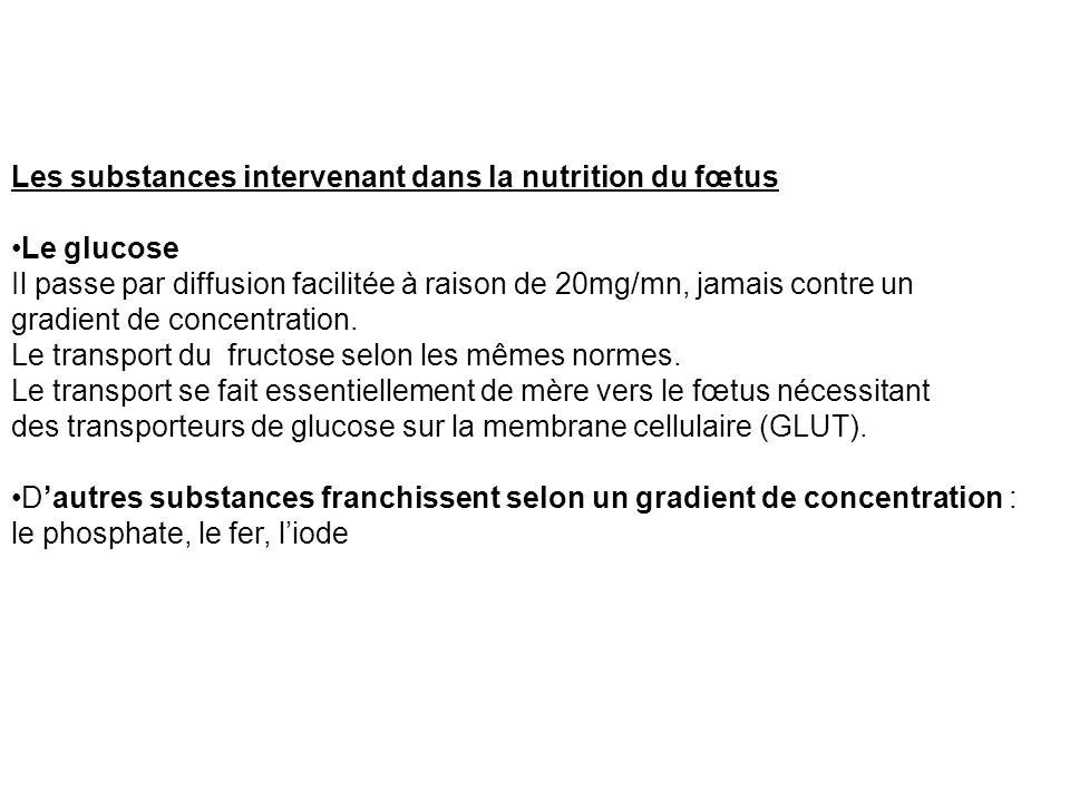 Les substances intervenant dans la nutrition du fœtus