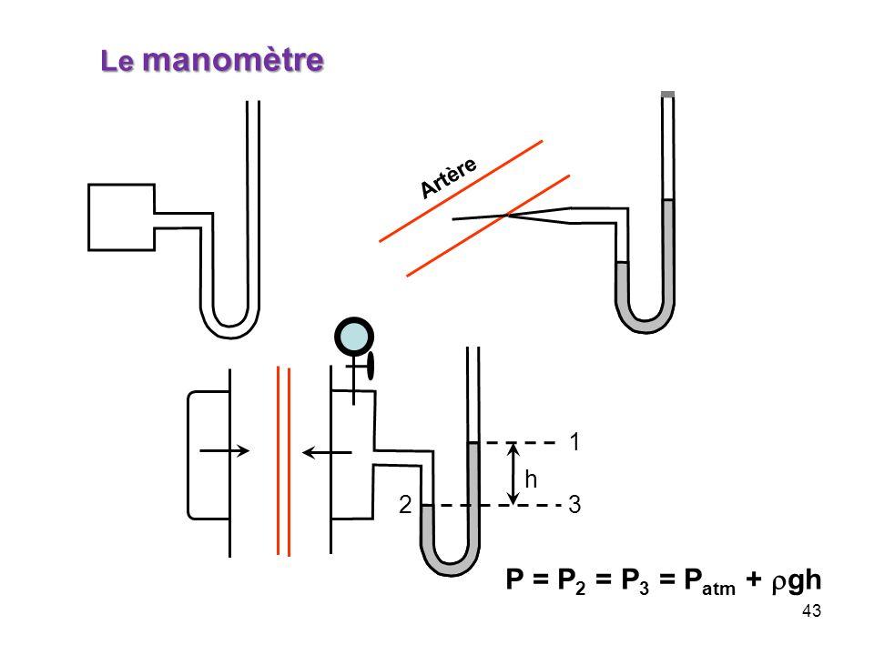 Le manomètre Artère 1 h 2 3 P = P2 = P3 = Patm + rgh