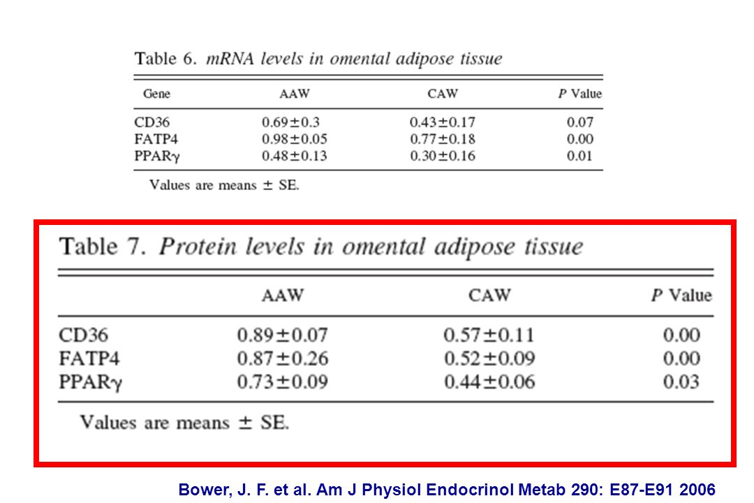 Bower, J. F. et al. Am J Physiol Endocrinol Metab 290: E87-E91 2006