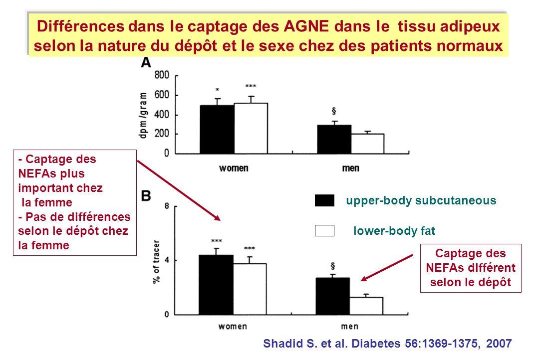 Différences dans le captage des AGNE dans le tissu adipeux